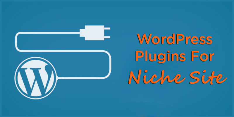 WordPress Plugines For Niche Site