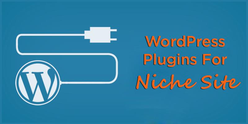 WordPress Plugines For Niche Site
