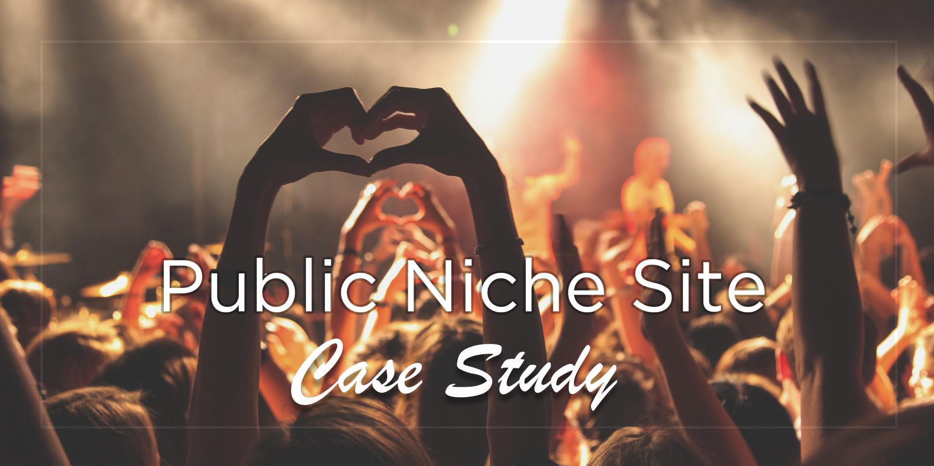 Public Niche Site Case Study