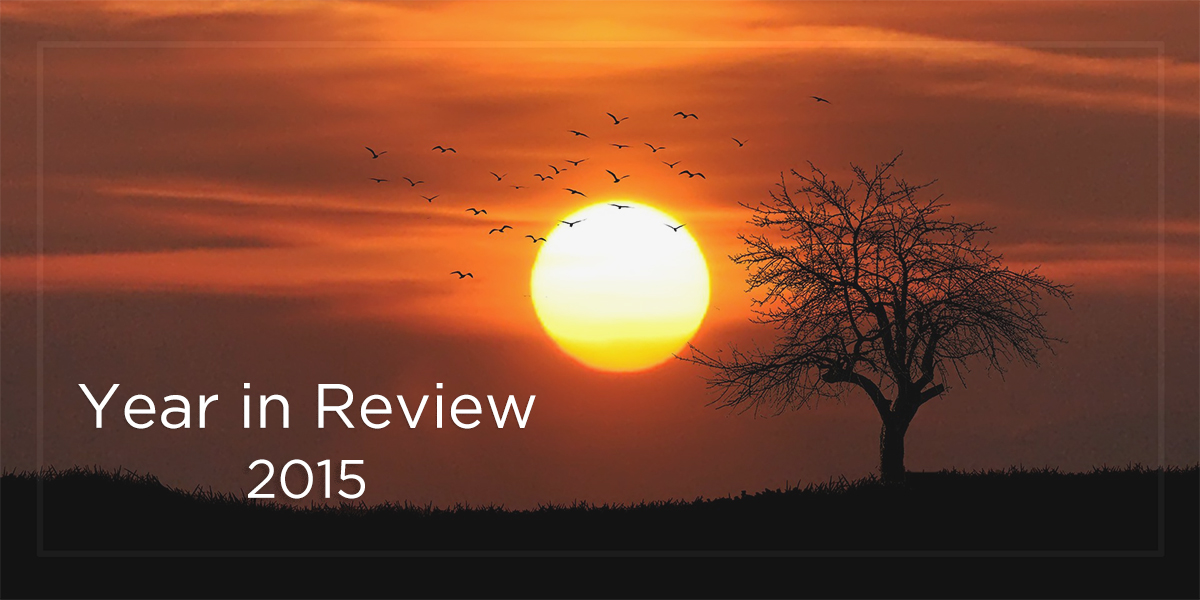 Year-in-Review-2015-Marketever